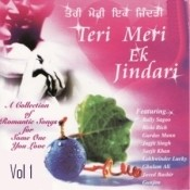 Teri Meri Ek Jindari Vol 1 Songs