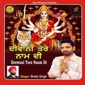 Deewani Tere Naam Di Song