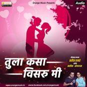 Tula Kasa Visaru Mi Satish Thakare Full Song