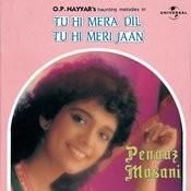 Tu Hi Mera Dil Tu Hi Meri Jaan Songs