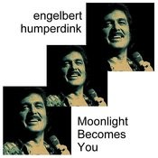 Moonlight Becomes You Song