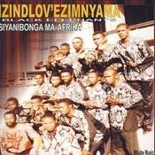 Bizani Abazalwane Song