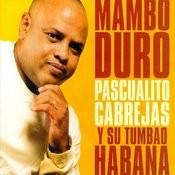 Mambo Duro Songs
