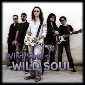 Wild Soul Songs