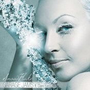 Snowflake (Feat. Clare Evers) Songs