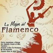 Lo Mejor Del Flamenco Songs