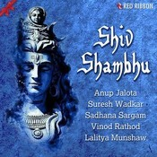 Shiv Tandav Song