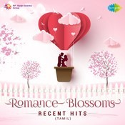 Romance Blossoms - Recent Hits Songs