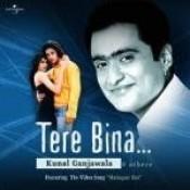 Tere Bina.... Songs