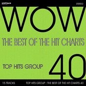 The Best Of The Hit Charts, Vol. 40 Songs