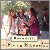 Pokedelic Songs