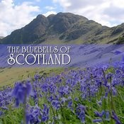 The Bluebells Of Scotland Songs