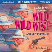Wild Wild West & New Pop Male Songs