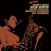 Adam's Apple Songs