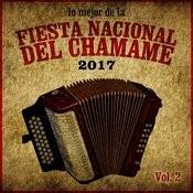 Lo Mejor De La Fiesta Nacional Del Chamamé 2017, Vol. 2 Songs