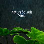 Nature Sounds: Rain Songs