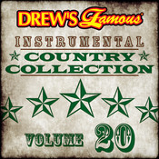 Drew's Famous Instrumental Country Collection (Vol. 20) Songs