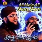 Ali Mola Ali Dam Dam Mp3 Song Download Ali Mola Ali Dam Dam Ali Mola Ali Dam Dam Punjabi Song By Hafiz Tahir Qadri On Gaana Com