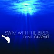 Swim With The Birds Songs