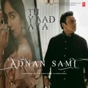 Tu Yaad Aya Song