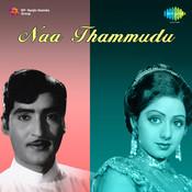 Naa Thammudu Songs