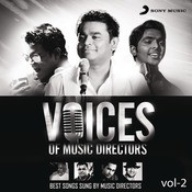 Voices Of Music Directors: Vol.2 Songs