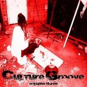 Culture Groove Vol. 3 Songs