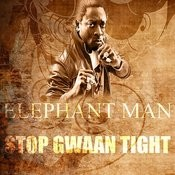 Stop Gwaan Tight Song