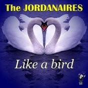 Like A Bird Songs