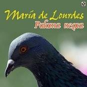 Paloma Negra Songs
