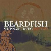 Sleeping In Traffic: Part Two Songs