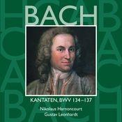 Bach, JS : Sacred Cantatas BWV Nos 134 - 137 Songs