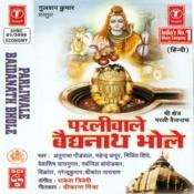 Parliwale Baidanath Bhole Songs