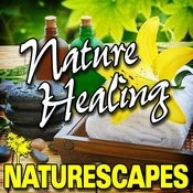 Nature Healing (Nature Sounds) Songs