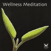 Wellness Meditation Songs