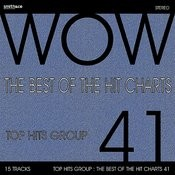 The Best Of The Hit Charts, Vol. 41 Songs