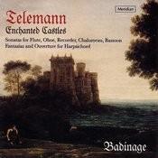 Enchanted Castles: Sonatas For Flute,Oboe,Recorder,Chalumeau,Bassoon Songs