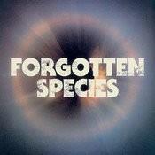 Forgotten Species Ep Songs