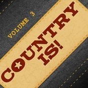 An American Parade Of Country Hits, Vol 3 Songs