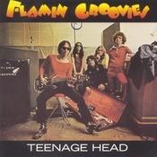 Teenage Head Songs