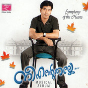 Nee Entethalle Songs