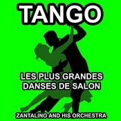 Les Plus Grandes Danses De Salon: Tango Songs
