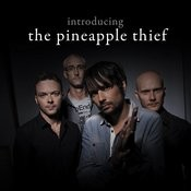Introducing... The Pineapple Thief Songs