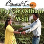 Peeyar Odhani Wali Songs