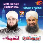 Owais Raza Qadri Songs Download: Owais Raza Qadri Hit MP3