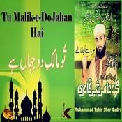 Tu Malik E Dojahan Hai Songs