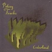 Cedarland Songs