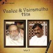 Vaalee & Vairamuthu Hits: Vol.1 Songs