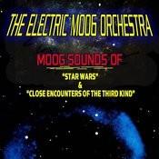 Moog Sounds Of