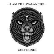 Wolverines Songs